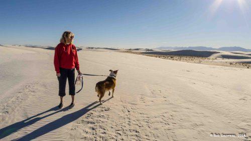 Dee Dee and Charlie walking the dunes at White Sand National Monument, New Mexico