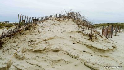 Blowing sand and barrier fence, Mustang Island State Park, Texas