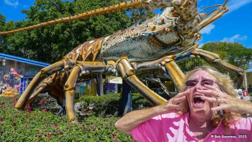 The attack of the giant crustaceans, near Marathon, Florida, in the Keys.