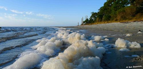 Foam on the beach, near our site at the Ho-Hum RV Park, Carrabelle, FL.