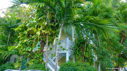 A view of our B & B in Key West, Florida.