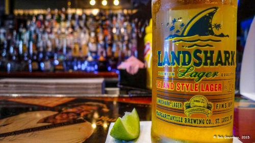 Having a Land Shark Beer at Jimmy Buffett's Margaritaville, Key West, Florida.