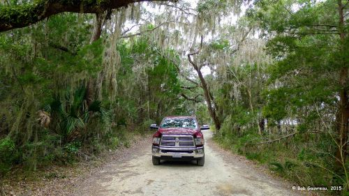 Driving out to the 'Shell Mound' area, near Cedar Key, FL