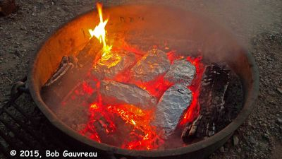 Cooking Foil Dinners