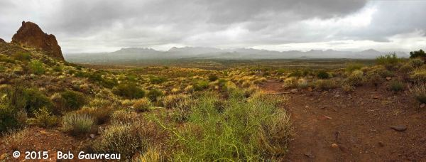 Towards Goldfield Mtns Panorama